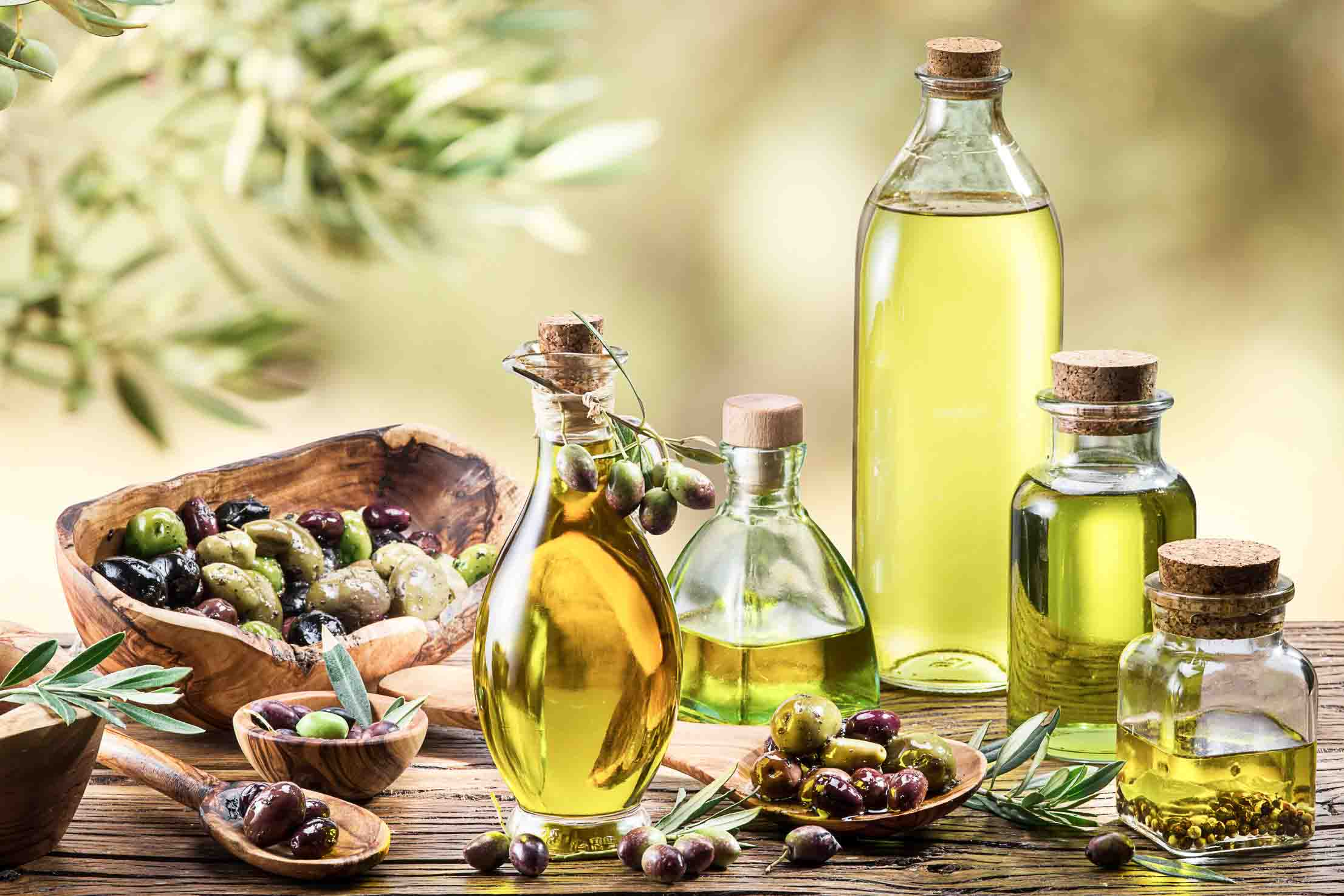 About Olive & Olive Oil