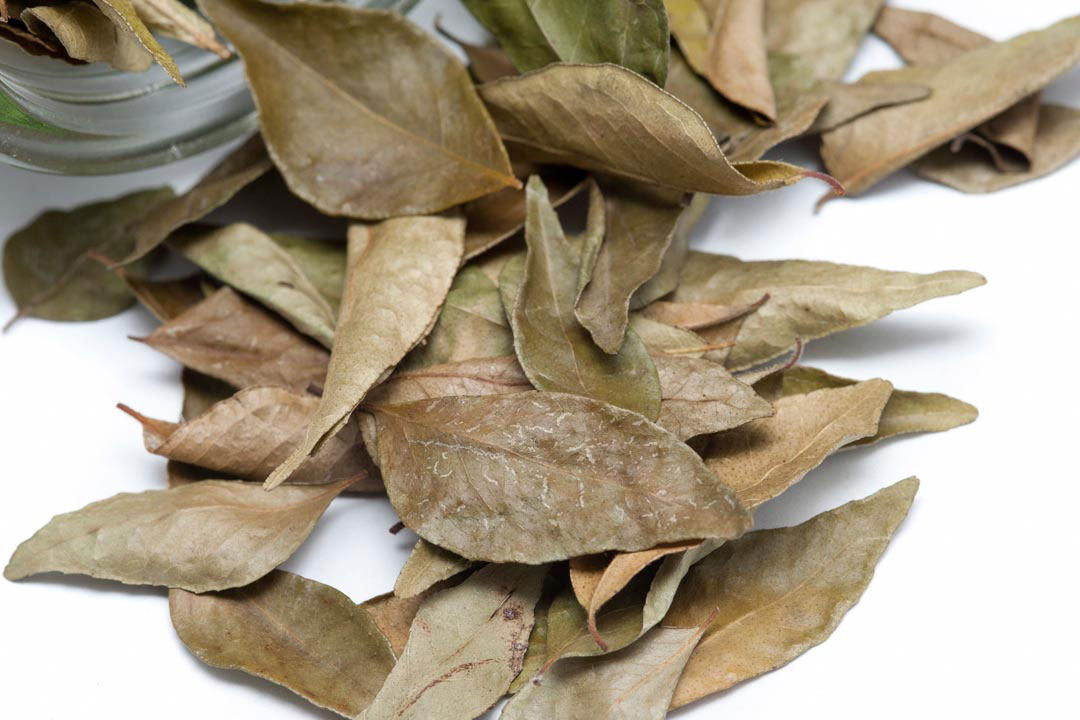 Dried_Bay_Leaf