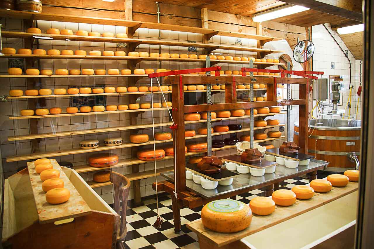 Cheese_Factory_2 (1)